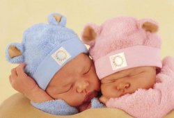 Как зачать и родить двойню