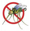 Малярия в Житомире