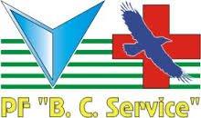 """Спецдоставка """"Б.К.Сервис"""". Служба поиска и курьерской доставки"""