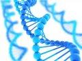 Медикал Геномикс Украина