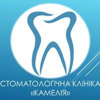 """Стоматологическая клиника """"Камелия"""""""