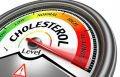 Холестерин: как держать в норме и не вредить здоровью?