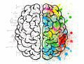 Пять способов «прокачать» свой мозг