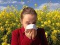 Какой вред здоровью может нанести пыльца растений?
