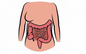 Как защитить себя от острых кишечных инфекций?