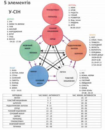 Рефлексотерапія. Діагностика захворювань та їх лікування